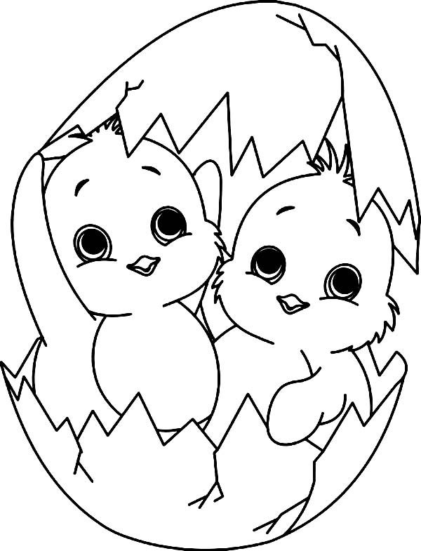 Easter Chicks Coloring Page 17