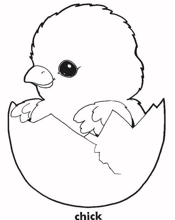 Easter Chicks Coloring Page 21