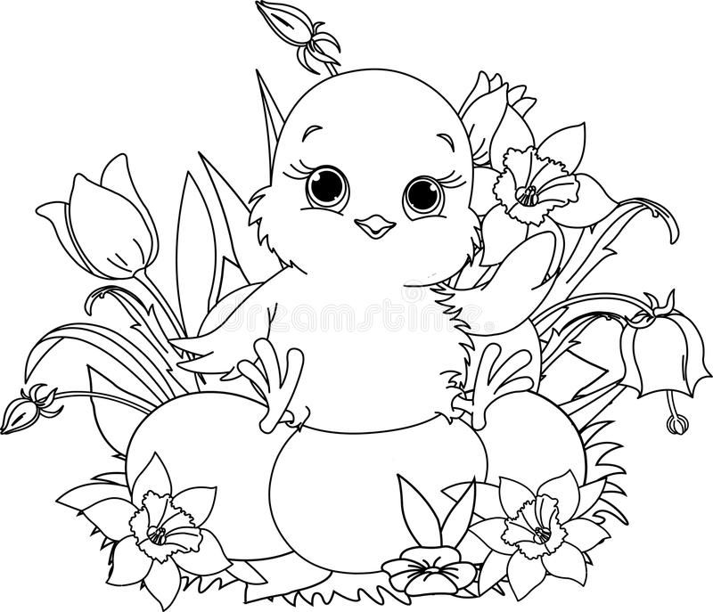 Easter Chicks Coloring Page 50