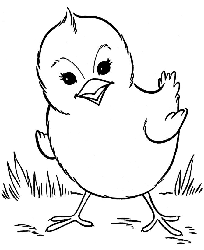 Easter Chicks Coloring Page 56
