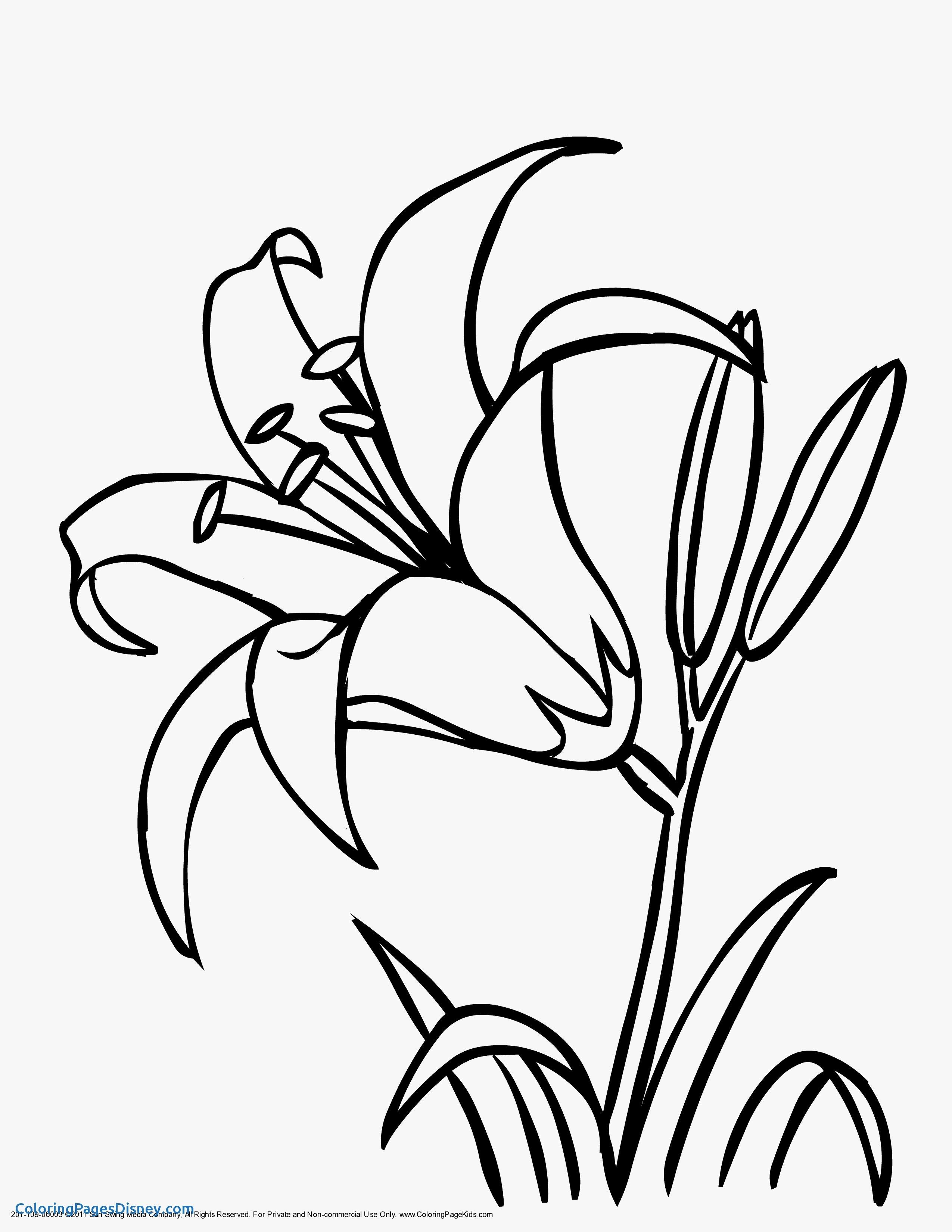 Easter Lily Coloring Page 27