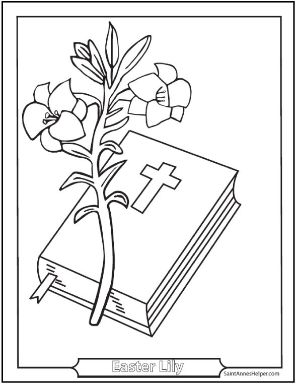Easter Lily Coloring Page 37