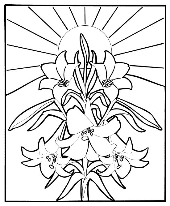 Easter Lily Coloring Page 8