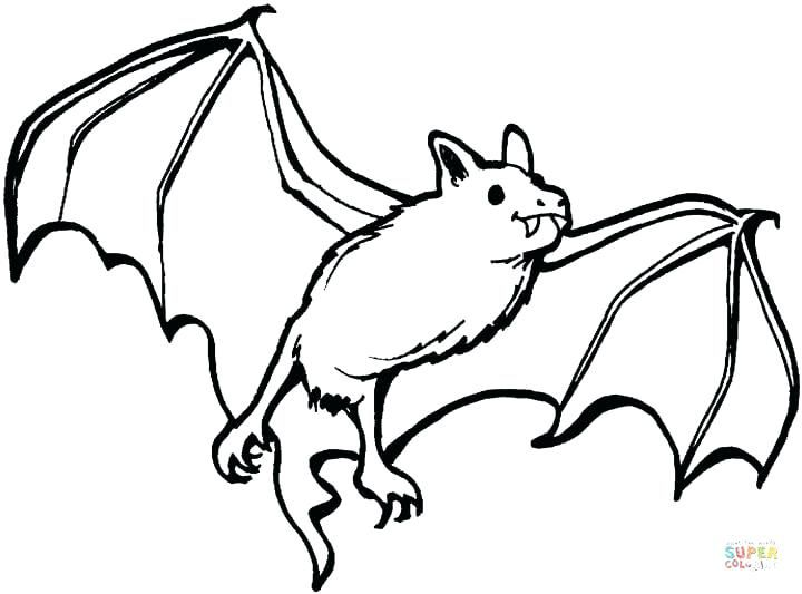 Halloween Coloring Pages Bats 26